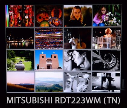 RDT223WM_angle1_mini.jpg